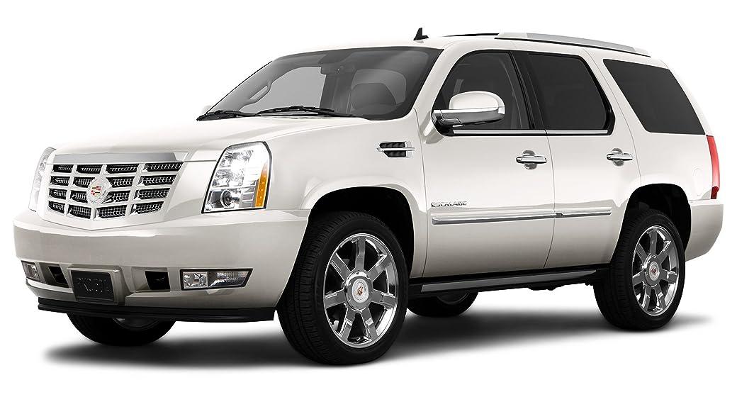 Cadillac Escalade Platinum >> 2010 Cadillac Escalade Platinum Edition All Wheel Drive 4 Door White Diamond Tricoat