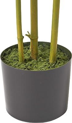 Christopher Knight Home Soperton Artificial Bamboo Plants, 6' x 2', Black + Green