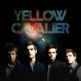 yellow cavalier