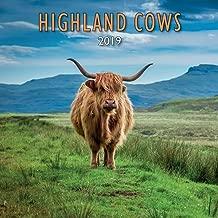 Best highland cow calendar 2019 Reviews