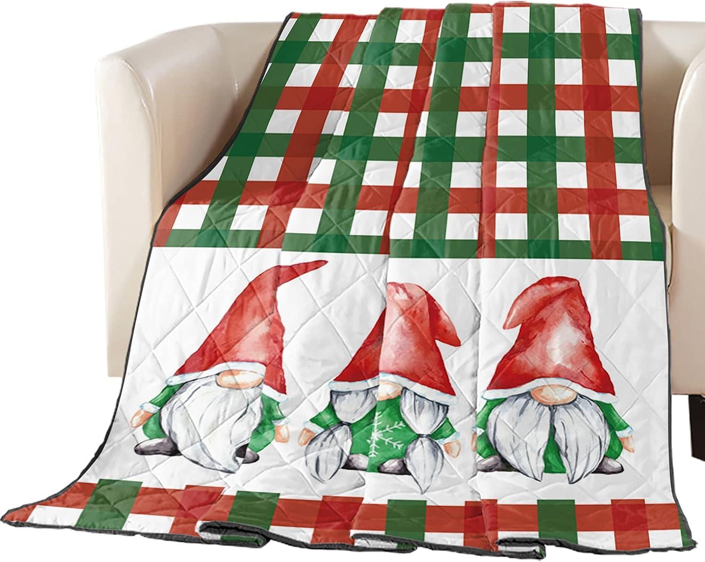 Ranking TOP2 Raleigh Mall SUN-Shine Down Alternative Comforter Duvet Christma Merry Insert