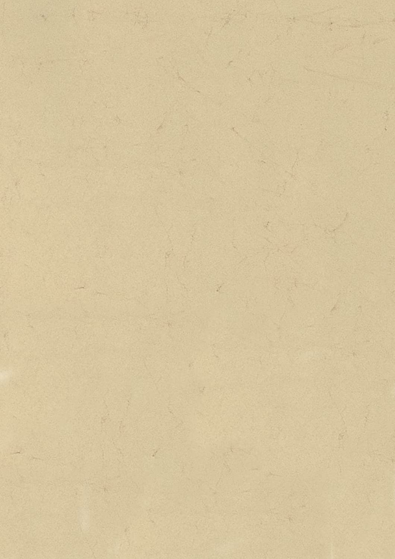 Heyda 204832011 Elefantenhaut (500 x 700 mm, 190 g qm, 10 Blatt) chamois B001QPRVF0   | Verschiedene Stile