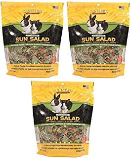 sunseed sun salad