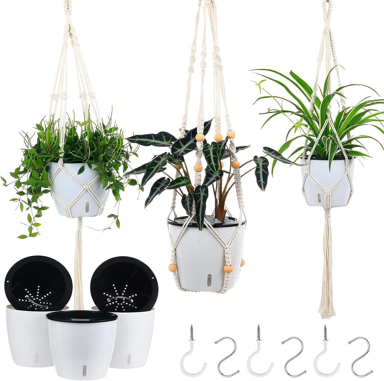 Plant Hangers Indoor Max 75% OFF with 6.7