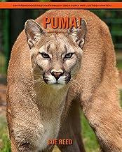 Puma! Ein pädagogisches Kinderbuch über Puma mit lustigen Fakten (German Edition)