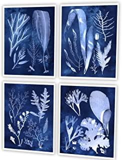 Gnosis Picture Archive Beach Theme Decor Set of 4 Unframed Navy Blue Seaweed Art Prints 8x10 inches Marine_Plants_Navy4A