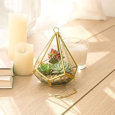 Mkono Artificial Succulent Plants with Hanging Glass Geometric Terrarium, Set of 3 Mini Vertical Miniature Potted Fake Plant