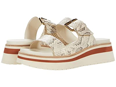 Dolce Vita Macen (Bone Snake Print Leather) Women