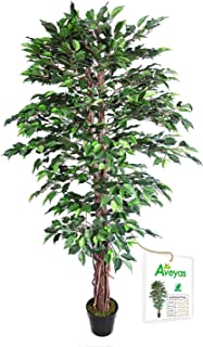 Aveyas 6ft Artificial Ficus Silk Tree (72in) with Plastic Nursery Pot, Fake Plant for..