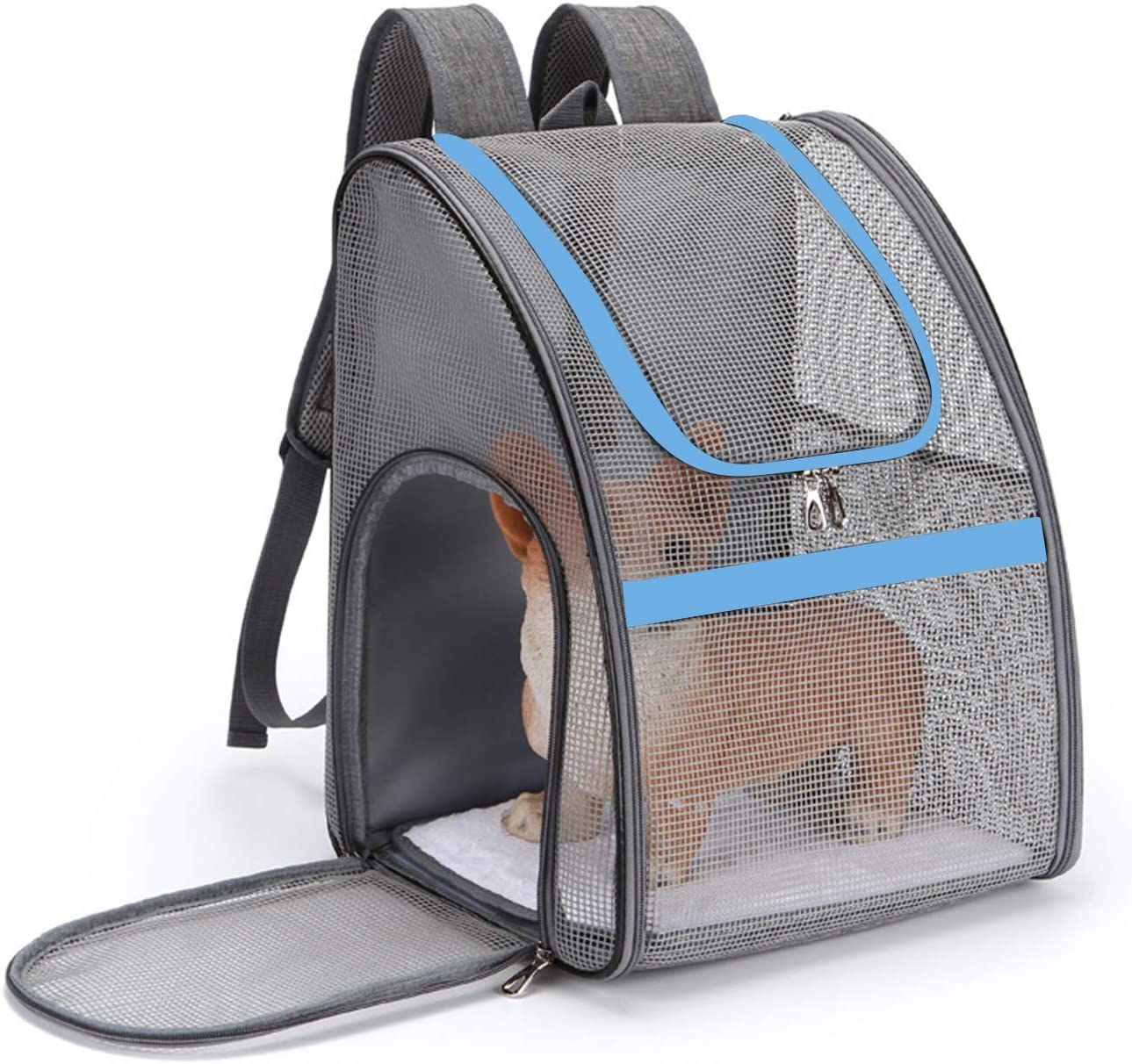 Petcute Katzen Hunde Rucksack Hundetragetasche Front Tragen Hundetransporttasche Rucksack Wanderrucksack Hunderucksack Für Kleine Hunde Katzen Bis Zu 7 5 Kg Haustier