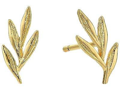 gorjana Willow Charm Studs Earrings (Gold) Earring