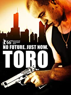 2016 toro timemaster