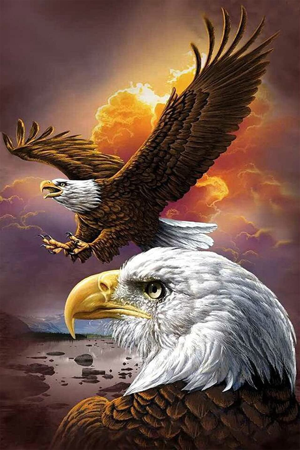 Faraway Soaring Eagle 5D Diy Full Round Diamond Painting Mosaics Embroidery Rhinestone Painting for Wall Decor 12X16inch