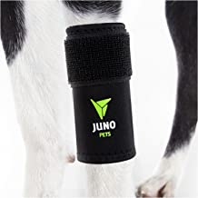 JunoPets Dog Canine Leg Knee Brace, Hock Joint Wrap for Heals and Prevents Injuries and Sprains, Helps with Loss of Stability (Front Leg, L/XL)