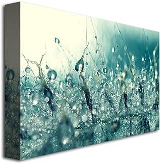 Trademark Fine Art Under The Sea by Beata Czyzowska Young Canvas Wall Art, 22x32-Inch