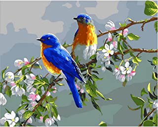 SUBERY DIY Oil Painting Paint by Numbers Kits for Adults Kids Beginner - Two Birds on a Flowering Branch 16x20 inches (Frameless)