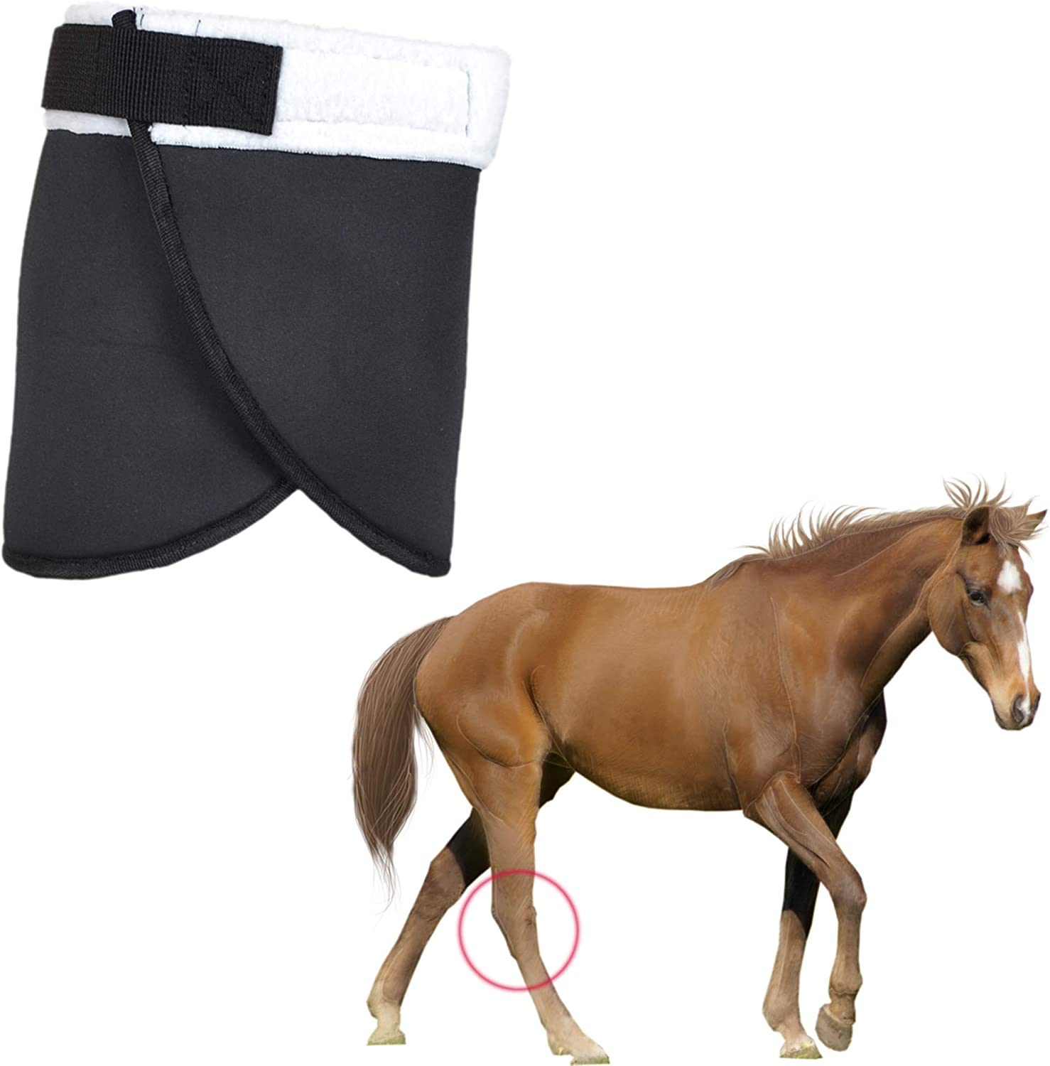 YUYUSO Hock Shield Max 47% OFF Protector Sale for Single Neoprene Wrap Horse