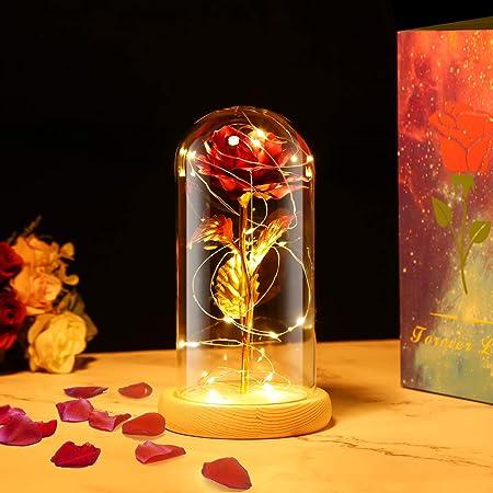 PREUP Rosa Eterna Rosas Bella y Bestia, Elegante Cúpula de Cristal con Base Pino Luces LED Regalos para el Día de San Valentín, Día de la Madre, Aniversario de Bodas, Cumpleaño (Marrones)