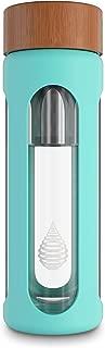 ion alkaline water bottle