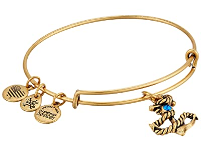Alex and Ani Seaside Anchor III Bangle (Rafaelian Gold) Bracelet