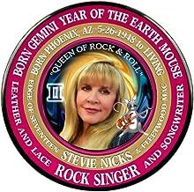 Stevie Nicks 70's Singer 3