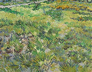 JH Lacrocon Van Gogh - Long Grass with Butterflies 1890 Canvas Wall Art Rolled 65X50 cm (Approx. 26X20 inch) - Landscape Paintings Reproductions Prints