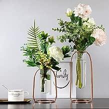 mementoy D/écoration De Pot De Fleur,Vase De Caf/é Vintage Chic en M/étal Mariage,Id/éal pour Les Bureaux Les /Écoles Et Les Lieux De Travail