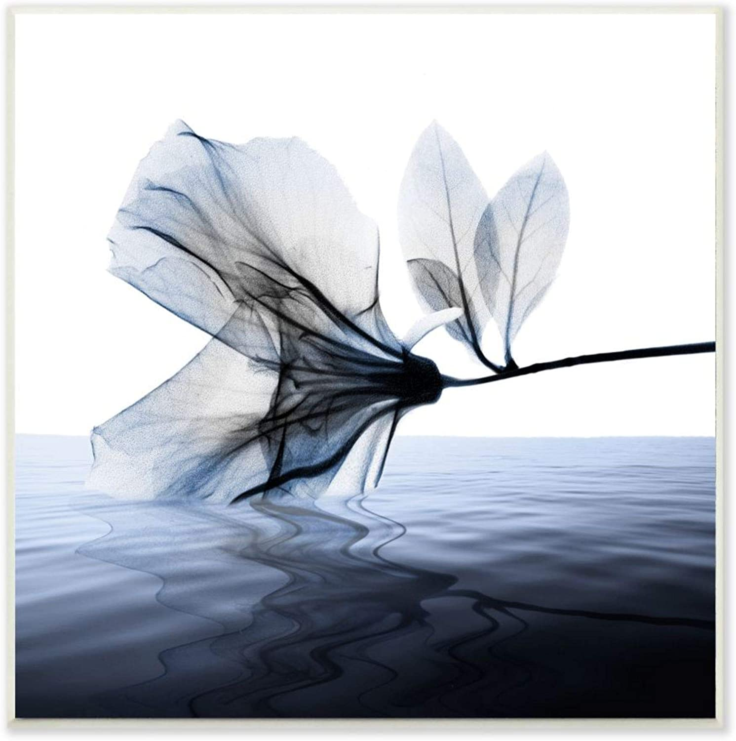 Stupell Industries New arrival At the price of surprise Flower Petals Touching Photo Water Blue White