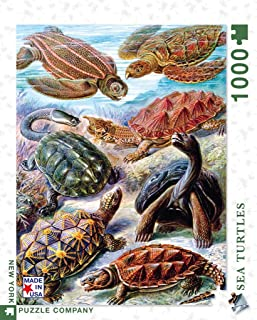 New York Puzzle Company - Vintage Images Turtles - 1000 Piece Jigsaw Puzzle