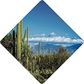Desert Functional Diamond Shaped Tin Sign,Wide View of The Tucson Countryside with Cacti Rural Wild Landscape Arizona Phoenix for Club Wall Decoration