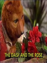 The Adventures of Bingo and Molly-The Daisy and the Rose