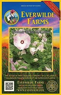 Everwilde Farms - 100 Swamp Mallow Native Wildflower Seeds - Gold Vault Jumbo Seed Packet