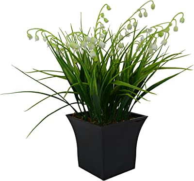 Thefancymart Artificial White Bells Grass in Black Squate Pot (28 cm/ 11 inchs)-1538