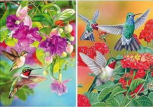 Yomiie 2 Pack 5D DIY Diamond Painting Birds Kit, Hummingbird Embroidery Cross Stitch Craft Arts Full Drill Piant with Diamond Friarbird Gift Idea for Women Home Decor 12x16 inch (30x40 cm)