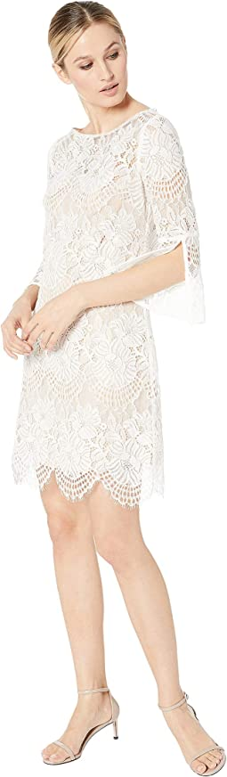 Lace Shift w/ 3/4 Sleeve