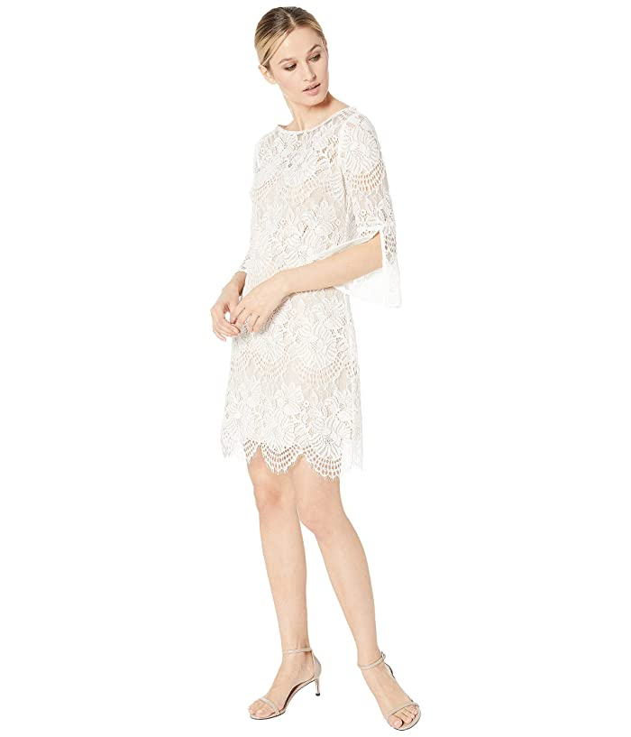Vince Camuto Lace Shift w/ 3/4 Sleeve (Ivory) Women