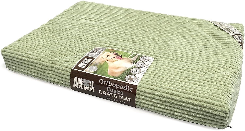 Animal Planet Orthopedic Pet Bed, 40 x26 x3 , Sage