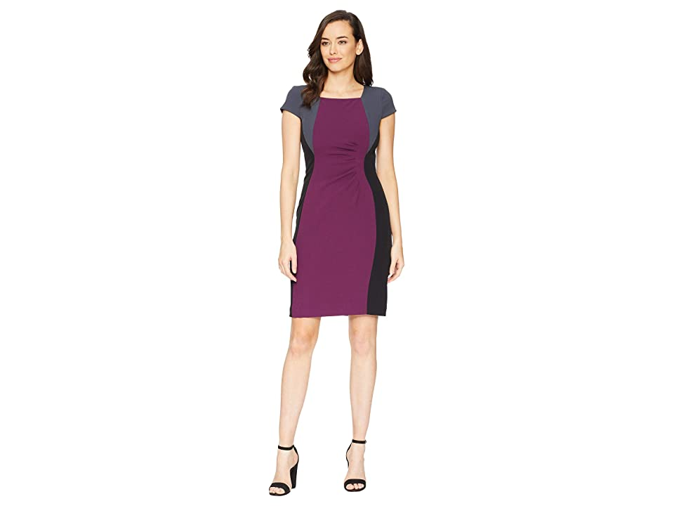 Tahari by ASL Cap Sleeve Color Blocked Dress with Side Ruching (Rasin/Black/Pewter) Women