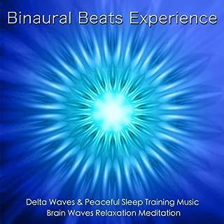 Binaural Beats Experience: Delta Waves & Sleep Training Music, Brain Waves & Relaxation Meditation
