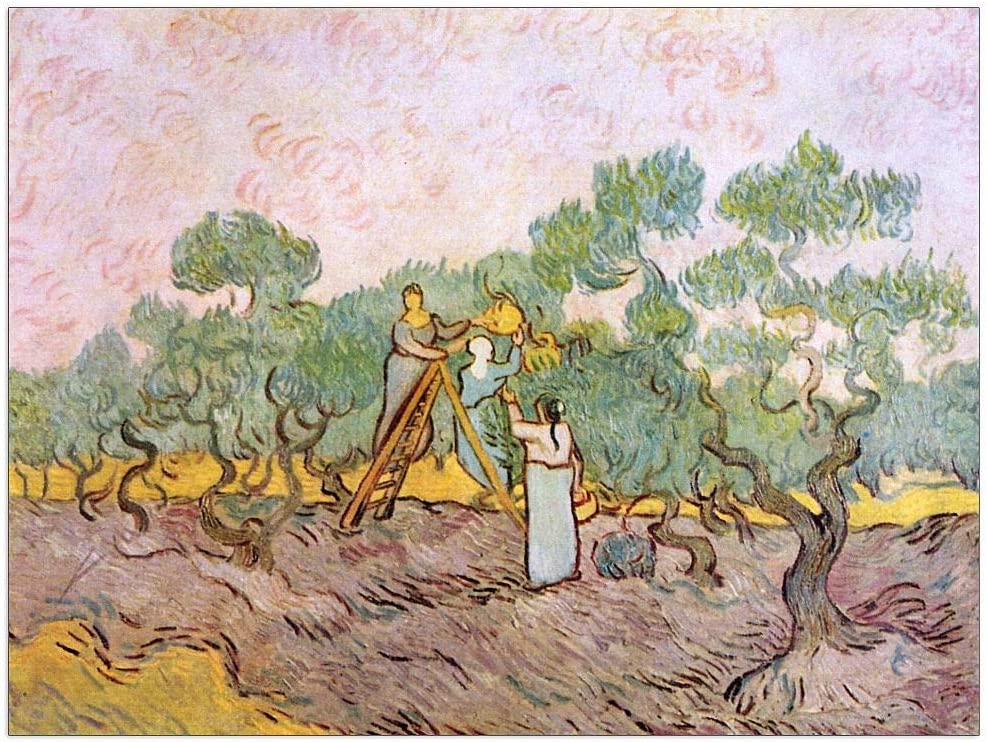 ArtPlaza 2021new shipping free shipping Van Gogh Vincent - Decorative 35.5 Olive Direct sale of manufacturer Panel Pickers