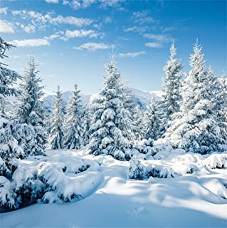 CSFOTO 8x8ft Background for Winter Forest Landscape Snow Scene Photography Backdrop White World Snow Cold Frost Sunny Wonderland New Year Christmas Holiday Photo Studio Props Vinyl Wallpaper