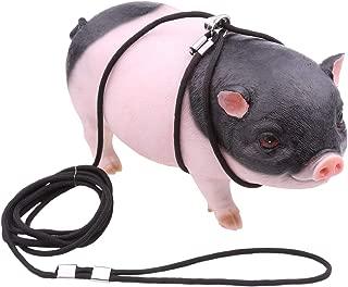 pot belly pig leash