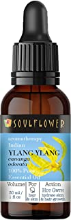 Soulflower Ylang Ylang Essential Oil, Premium Quality, Pure Indian Undiluted, Ancient Miracle for Youthful Radiance, Vega...