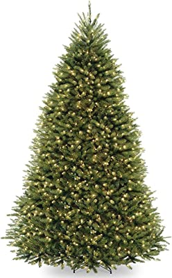 Natiоnal Trее Cоmpany 9 Foot Dunhill Fir with 900 Clear Lights, Hinged (DUH-90LO)