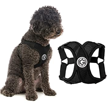 Gooby Dog Harness - Comfort X Step-in Small Dog Harness with Patented Choke-Free X Frame - Perfect on The Go No Pull Harness for Small Dogs or Cat Harness
