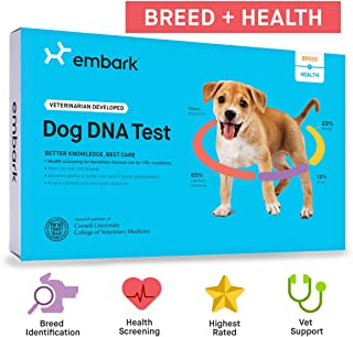 Embark   Dog DNA Test   Breed Identification   160 Health Results   200K Genetic Markers