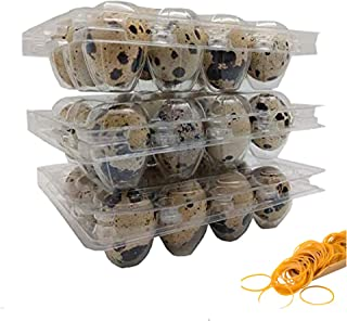 100 Clear 12 Cavity Quail Egg Cartons by Quail Egg Cartons with 100 Pcs Rubber Brands (1.4)