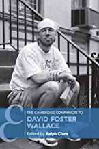 david foster wallace pale king