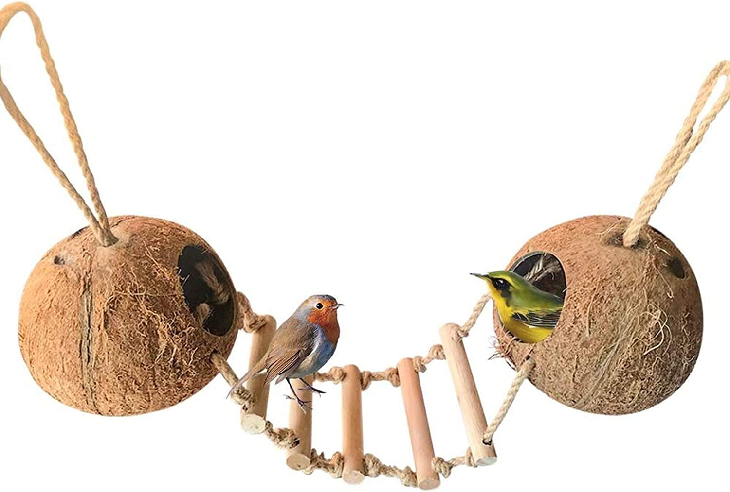 Bird Hides Coconut Nest with Wood Cage Han Hamster Animer and price revision Syrian Jacksonville Mall Ladder