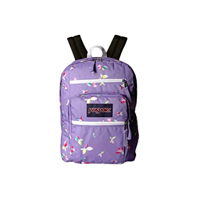 JanSport Big Student (Purple Dawn Butterfly Kisses) Backpack Bags